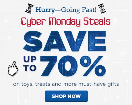 6_PFD_HolidayLP_CyberMonday_HPFeatureBoxMobile_450x360